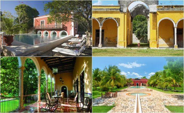 Henequén, el oro verde de las haciendas en Yucatán