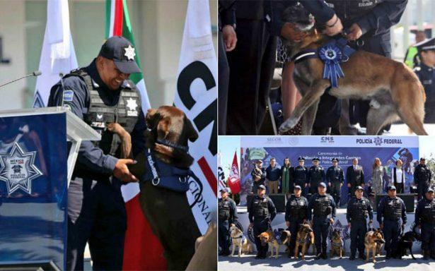 En emotiva ceremonia, Policía Federal jubila a 14 agentes caninos
