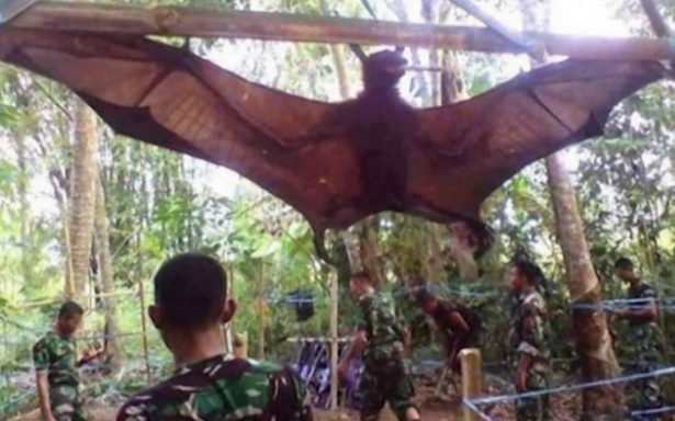 ¡Increíble! ¡Capturan a Batman en Filipinas!
