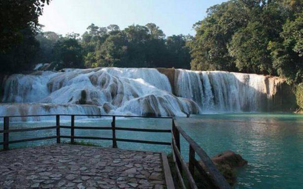 Rescatan cascadas de Agua Azul