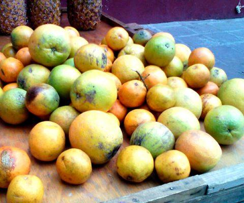 Aumenta el precio de la naranja