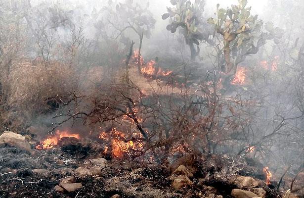 Incendios afectaron más de cinco mil has.