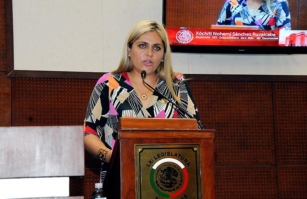 "Niega legisladora ""línea"" sobre la CDHEZ"