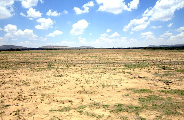 Escasez de lluvia impide siembra en Rancho Grande