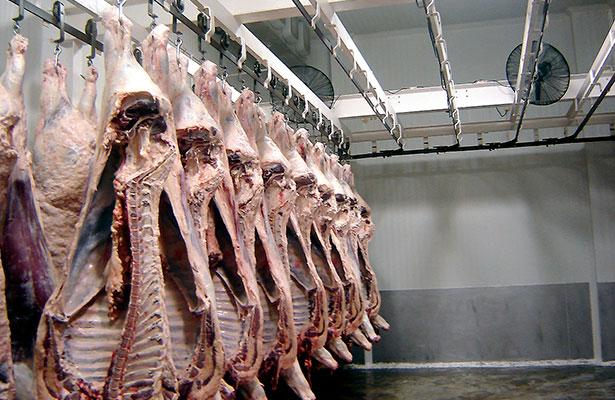 Asegura la Cofepris 414 kilos de carne