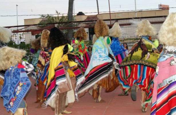 Los tastoanes invaden el sur de Zacatecas