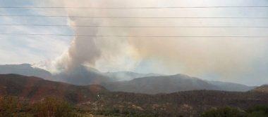 Controlado al 50% incendio forestal en Juchipila