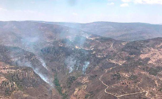 Sofocan incendio forestal en Juchipila; fue provocado