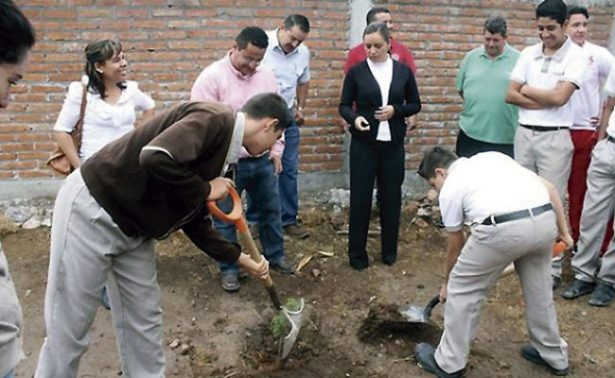 Plantan y cuidan dos mil 500 árboles en Jalpa