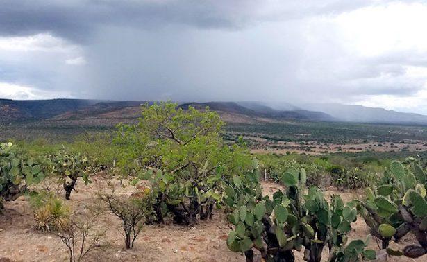 Sigue el frío: cuatro grados en Zacatecas