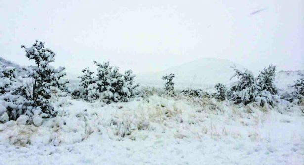 Bajan temperaturas en Chihuahua