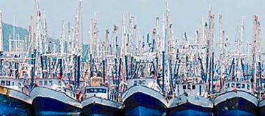 Amarrada la mitad de la flota camaronera de Mazatlán