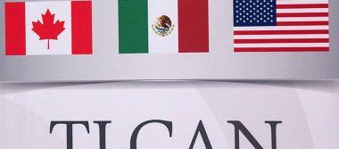 Negociación del TLCAN llega a momento cúspide y pronto habrá cierre: Rogelio Garza