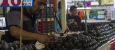 Inflación desacelera en primera quincena de junio, se ubica en 0.24%: INEGI