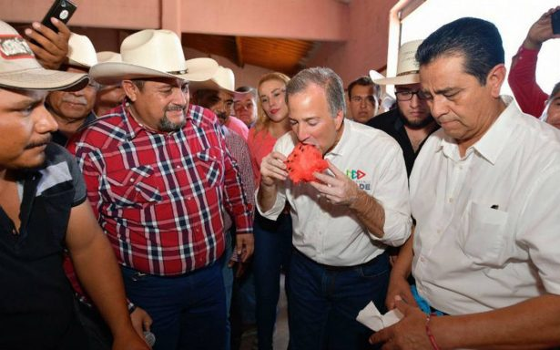Meade reconoce labor de exportadores de melón y sandía