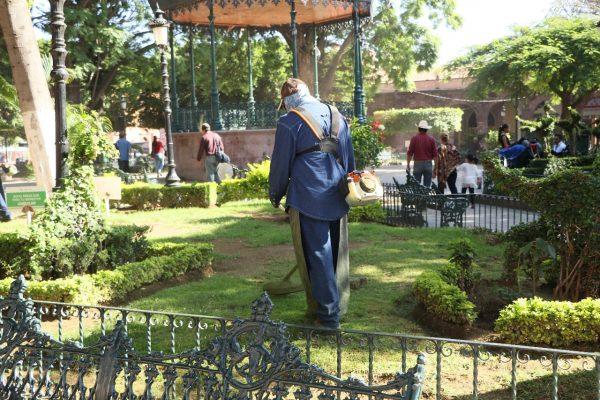 Gobierno Municipal mantiene especial atención a parques y jardines