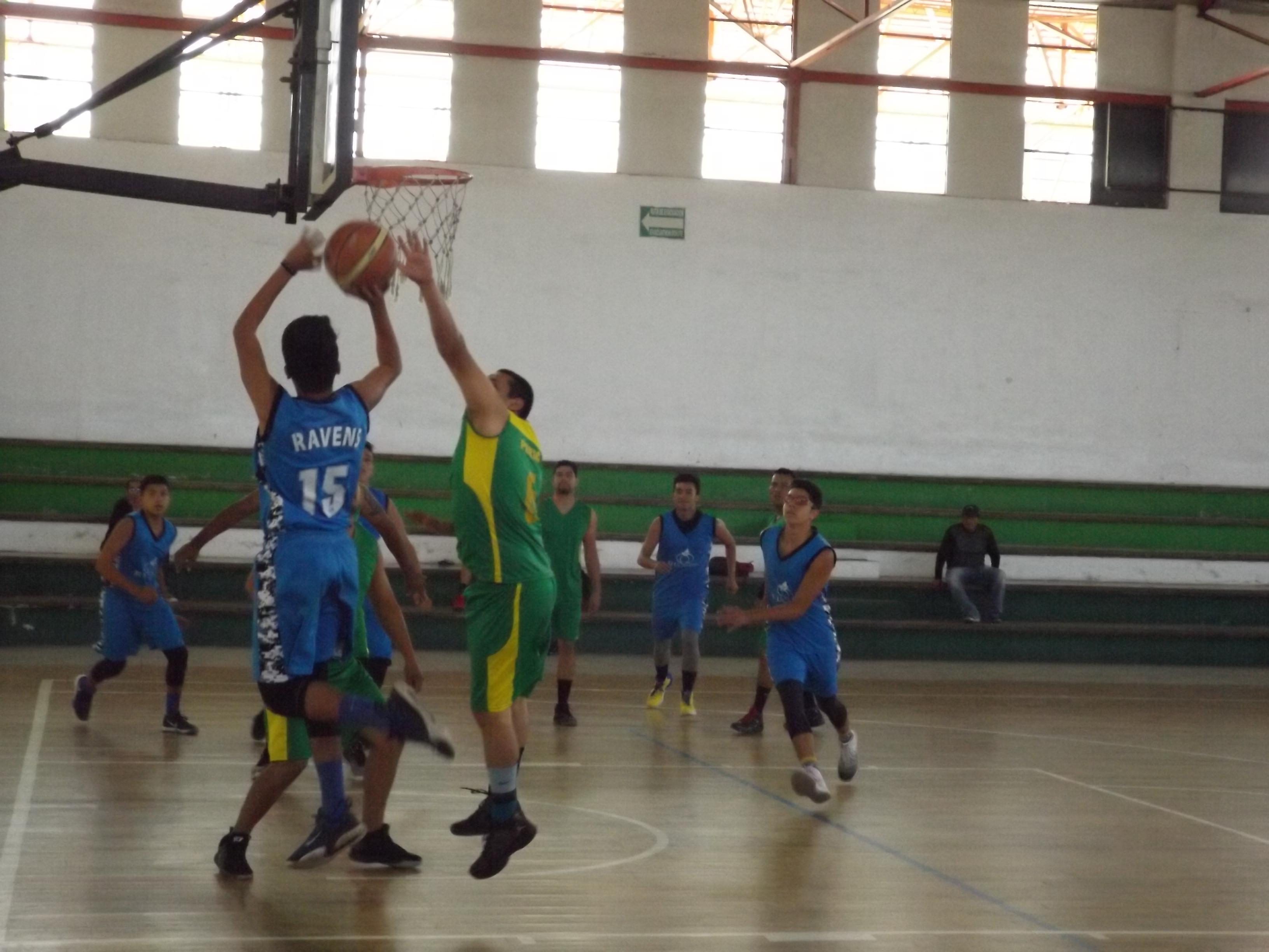 2009WAINOS (4)