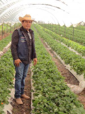 Agricultura, labor rentable de Zamora