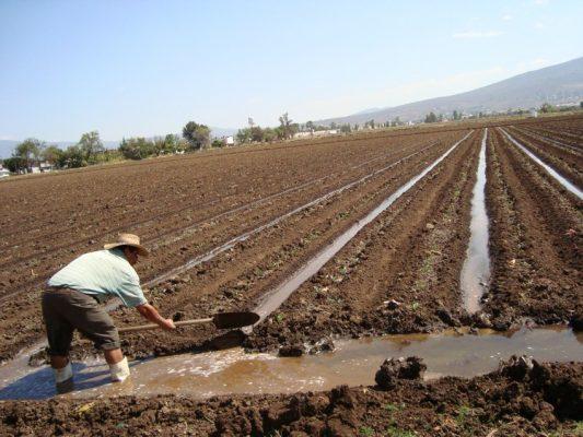 Garantizada, agua para riego agrícola