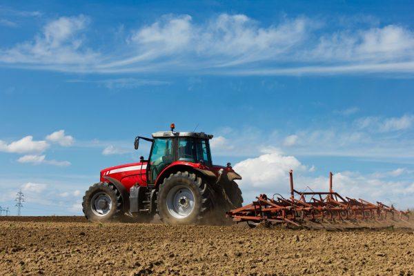 Ejidatarios optan por rentar sus tierras