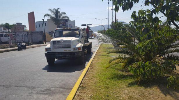 Permanentes, labores de mantenimiento a zonas verdes del municipio