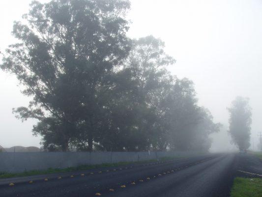 Extensa neblina cubre Zamora