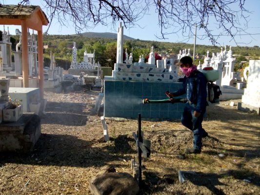 Declaran a panteón libre de huevecillos de aedes aegypti