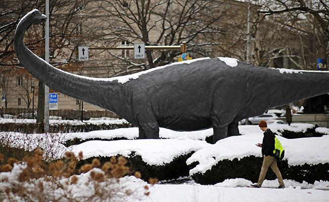 """Cambia """"árbol genealógico"""" de los dinosaurios"""