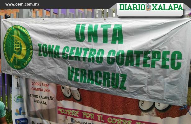 Les rechazaron sus proyectos productivos y Campesinos protestaron en la Sedesol