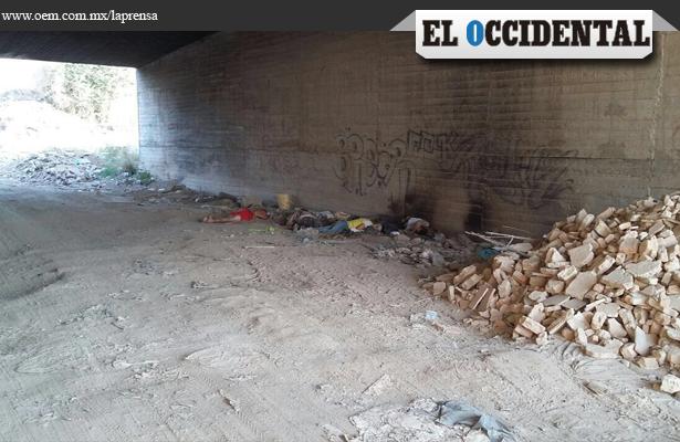 Rojo amanecer en Jalisco: seis ejecutados