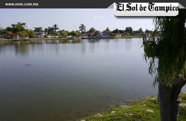 Hallan cocodrilo en el lago artificial del Parque Bicentenario