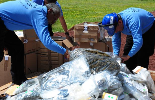Destruyen más de 85 toneladas de narcóticos en Querétaro