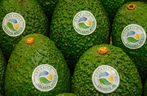 Certifica SAGARPA 13.5 mil productores orgánicos en el país