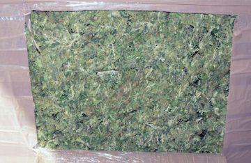 PGR, en Zacatecas asegura de más de 4 toneladas de marihuana