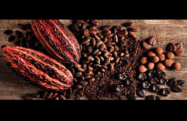 Investigadores mexicanos descubren propiedades contra el cáncer en chocolate