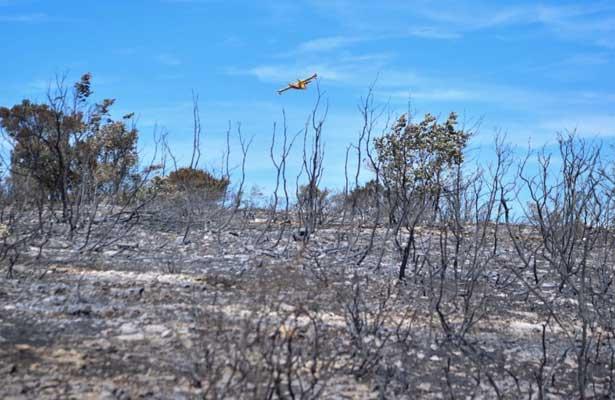Controlan incendios forestales en el sureste de Francia