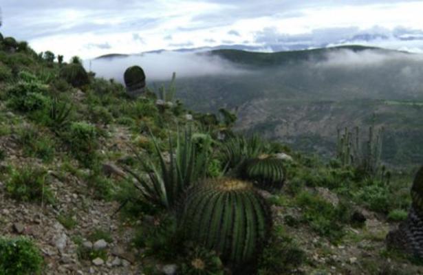 Aspirante a Patrimonio de la Humanidad: Valle de Tehuacán-Cuicatlán