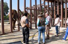 Visita especialista de la Association of Zoos and Aquariums, los zoológicos de la cdmx