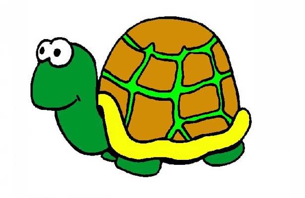 Pierde zoológico japonés a tortuga gigante