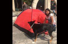 Pernoctaron en Parque México por miedo a replicas