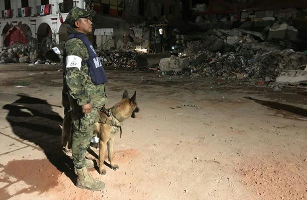 Caninos de la Marina rescatan 12 personas, en Oaxaca