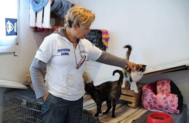 Crece adopción de mascotas: EO