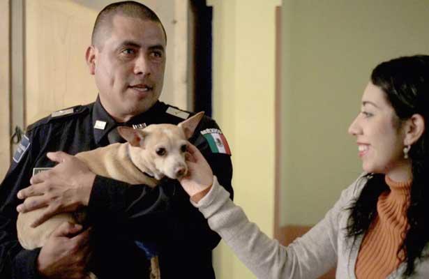"""Camila"" la perrita chihuahua se reunió con el policía que la rescató"