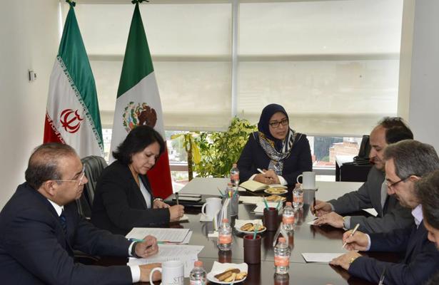 Llega delegación iraní a México
