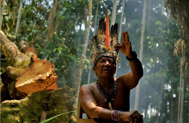 Para una tribu amazónica, la selva es un mundo infinito