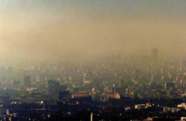 Pulmones urbanos contribuyen a limpiar aire contaminado