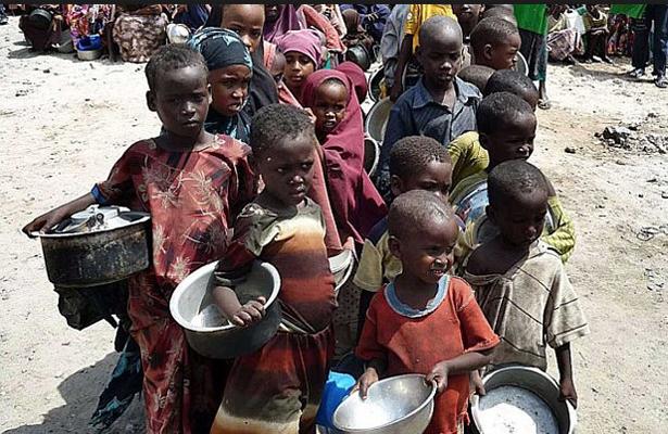 La desnutrición mundial amenaza con descarrilar el desarrollo humano