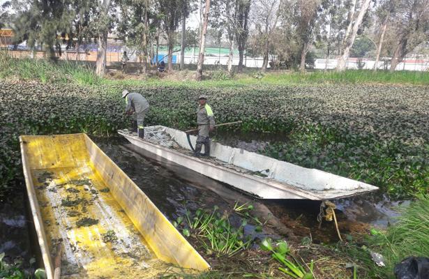 Emprenden jornada de limpieza en Cuemanco