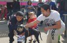 Aún se puede adoptar un can rescatado por el STC: Gaviño
