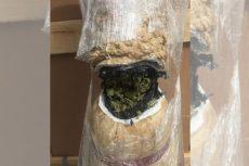 Descubre binomio canino mariguana oculta en jarrón artesanal